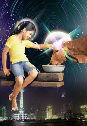 Cow Girl _img